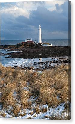 St Mary's Island Winter Canvas Print by Bryan Attewell