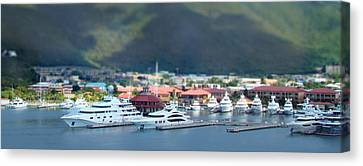 St. Thomas Us Virgin Islands Canvas Print by Shelley Neff