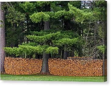 Woodpile Canvas Print - Stacked Fire Wood by Paul Freidlund