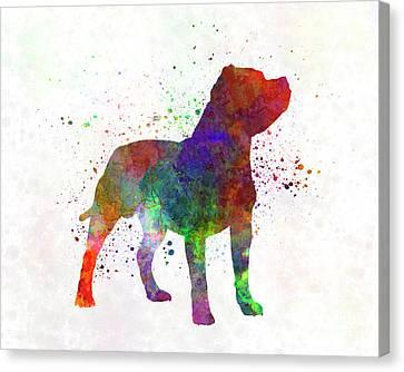 Staffordshire Bull Terrier Canvas Print - Staffordshire Bull Terrier In Watercolor by Pablo Romero