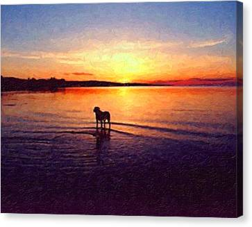 Staffordshire Bull Terrier On Lake Canvas Print by Michael Tompsett