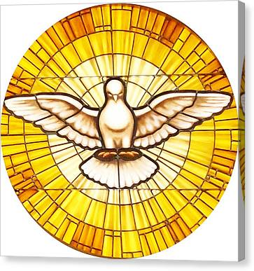 Stain Glass Dove Canvas Print by Joseph Frank Baraba