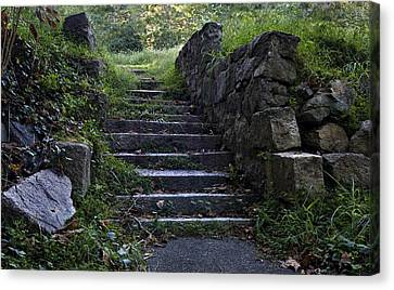 Stairs To . . .      Canvas Print by Murray Bloom