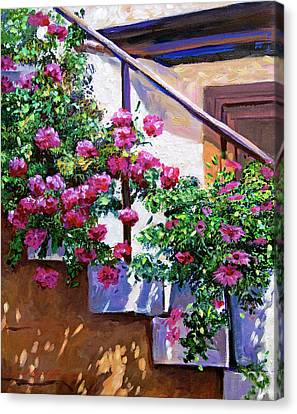 Stairway Floral Plein Air Canvas Print by David Lloyd Glover