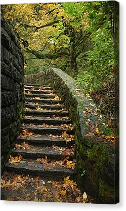 Canvas Print featuring the photograph Stairway To Fall by Lori Mellen-Pagliaro