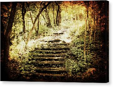 Stairway To Heaven Canvas Print by Julie Hamilton