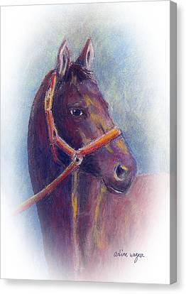 Stallion Canvas Print by Arline Wagner