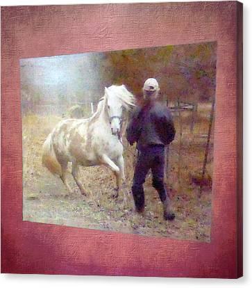 Canvas Print - Stallion's Springtime Emotions by Patricia Keller