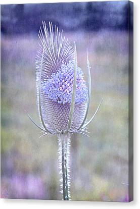 Canvas Print featuring the digital art Stand Alone by Margaret Hormann Bfa