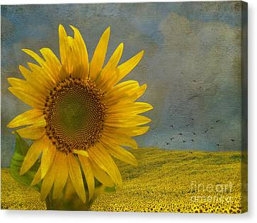 Artography Canvas Print - Stand Out by AJ Yoder