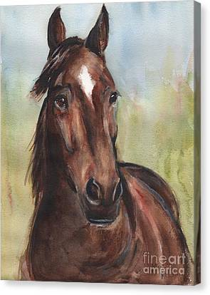 Standardbred Horse Head Canvas Print by Maria's Watercolor