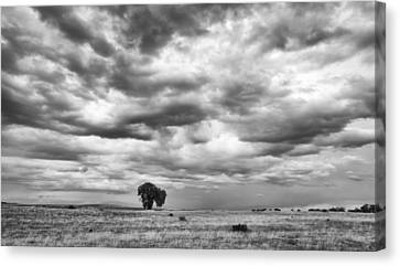 Canvas Print featuring the photograph Standing Alone by Monte Stevens