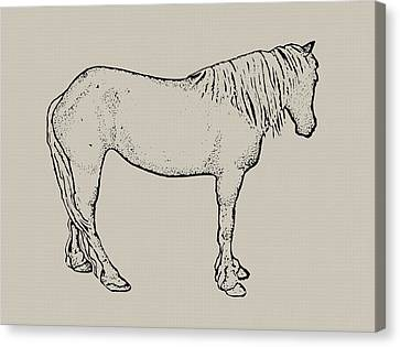 Standing Horse Canvas Print by Joyce Geleynse