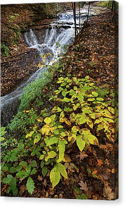 Canvas Print featuring the photograph Standing On The Edge by Dale Kincaid