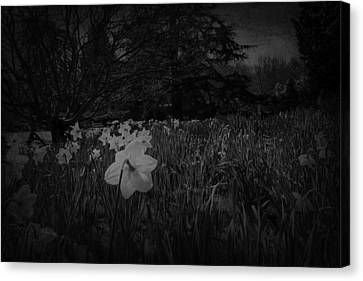 Canvas Print featuring the photograph Standing Proud by Ryan Photography