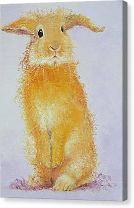 Standing Rabbit - Honey Canvas Print