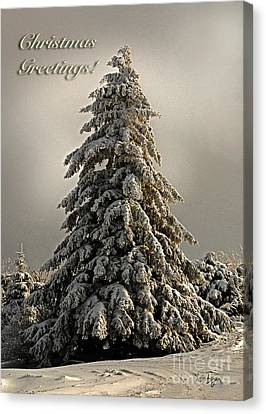 Standing Tall Christmas Card Canvas Print by Lois Bryan