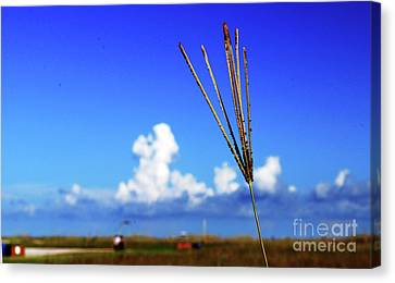 Canvas Print featuring the photograph Standing Tall by Gary Wonning