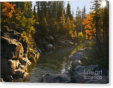 Stanislaus Sunset Larry Darnell Canvas Print by Larry Darnell