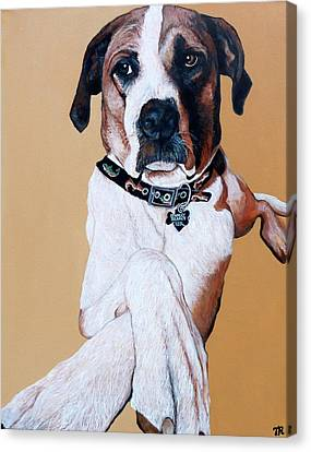 Canvas Print featuring the painting Stanley by Tom Roderick