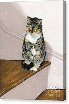 Stanzie Cat Canvas Print by Sarah Batalka