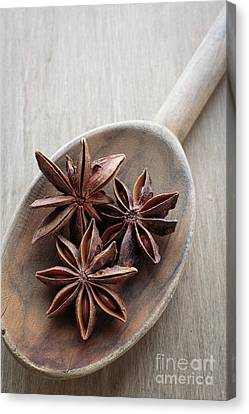 Wooden Bowls Canvas Print - Star Anise On A Wooden Spoon by Edward Fielding