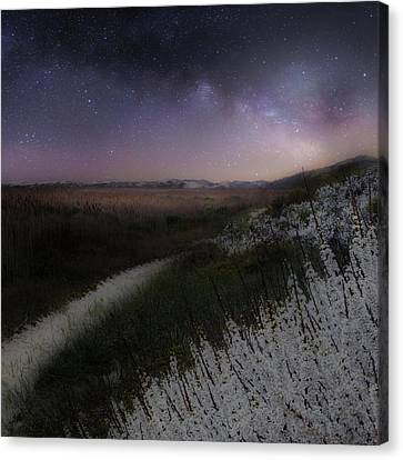 Canvas Print featuring the photograph Star Flowers Square by Bill Wakeley