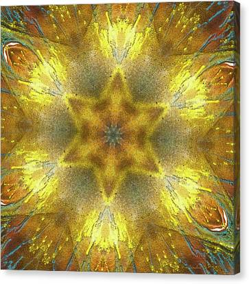 Star Kaleidoscope Canvas Print by Wim Lanclus