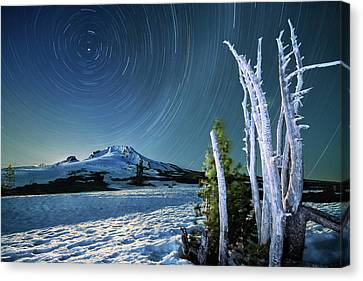 Star Trails Over Mt. Hood Canvas Print by William Lee