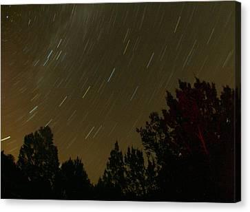 Star Tripping Canvas Print by David S Reynolds