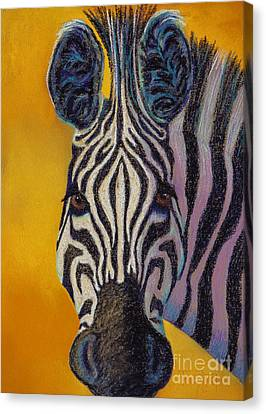 Stare Down Canvas Print by Tracy L Teeter
