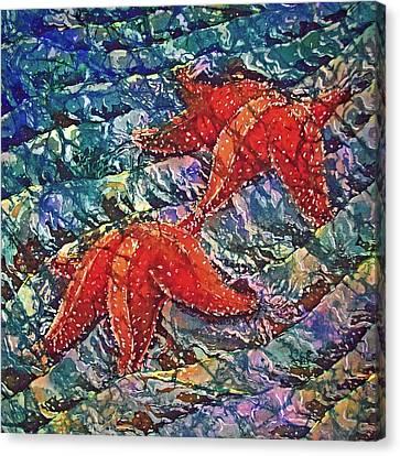 Starfish 2 Canvas Print by Sue Duda