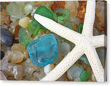 Starfish Art Prints Blue Green Seaglass Sea Glass Agates Canvas Print by Baslee Troutman Art Prints