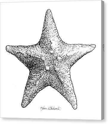 Canvas Print featuring the drawing Starfish Drawing Black And White Sea Star by Karen Whitworth