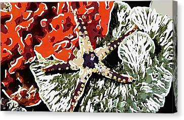 Starfish In Coral Reef 7 Canvas Print by Lanjee Chee