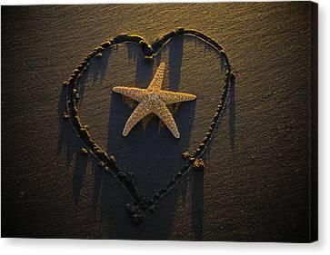 Starfish Inside Heart Canvas Print
