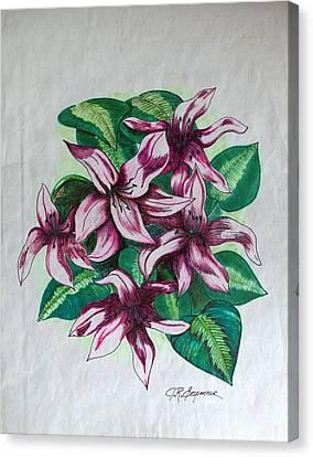 Stargazers Blooming Canvas Print by J R Seymour