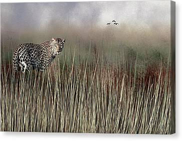 Canvas Print featuring the photograph Staring Back by Diane Schuster