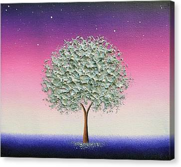 Starlight Canvas Print by Rachel Bingaman