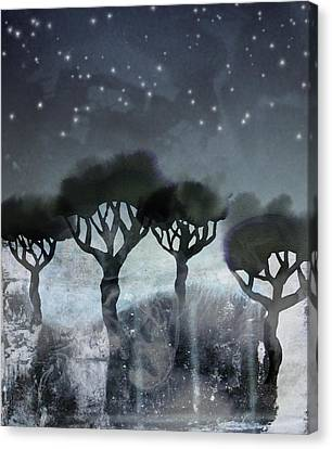Starlit Marsh Canvas Print by Varpu Kronholm