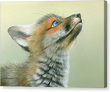 Starry Eyes Canvas Print by Mike Brown