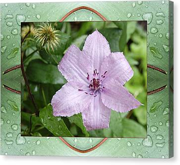 Canvas Print featuring the photograph Starry Mauve by Bell And Todd