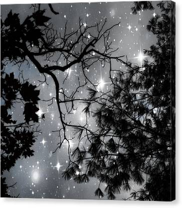 Starry Night Sky Canvas Print by Marianna Mills
