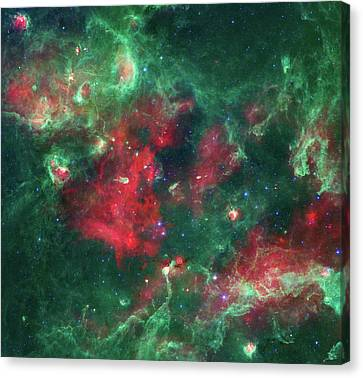 Stars Brewing In Cygnus X Canvas Print by Mark Kiver