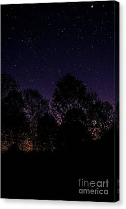 Stars Canvas Print by Brian Jones