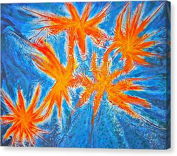 Stars Canvas Print by Marie Halter