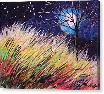 Stars Over Grasses Canvas Print