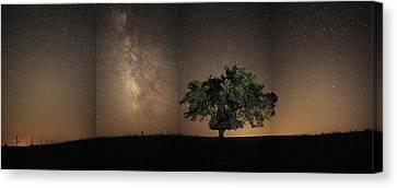 Stars Shine Brightly Canvas Print by Jim Richardson