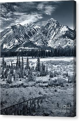 Starting To Look A Lot Like Christmas Canvas Print by Royce Howland