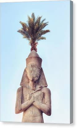 statue of Ramses Canvas Print by Joana Kruse